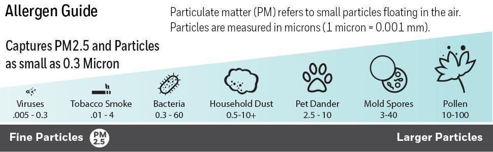 Particles Size Image
