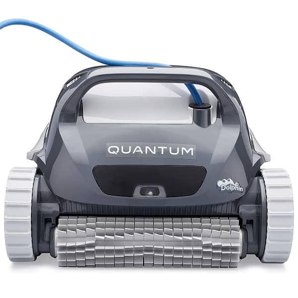 Dolphin Quantum Image